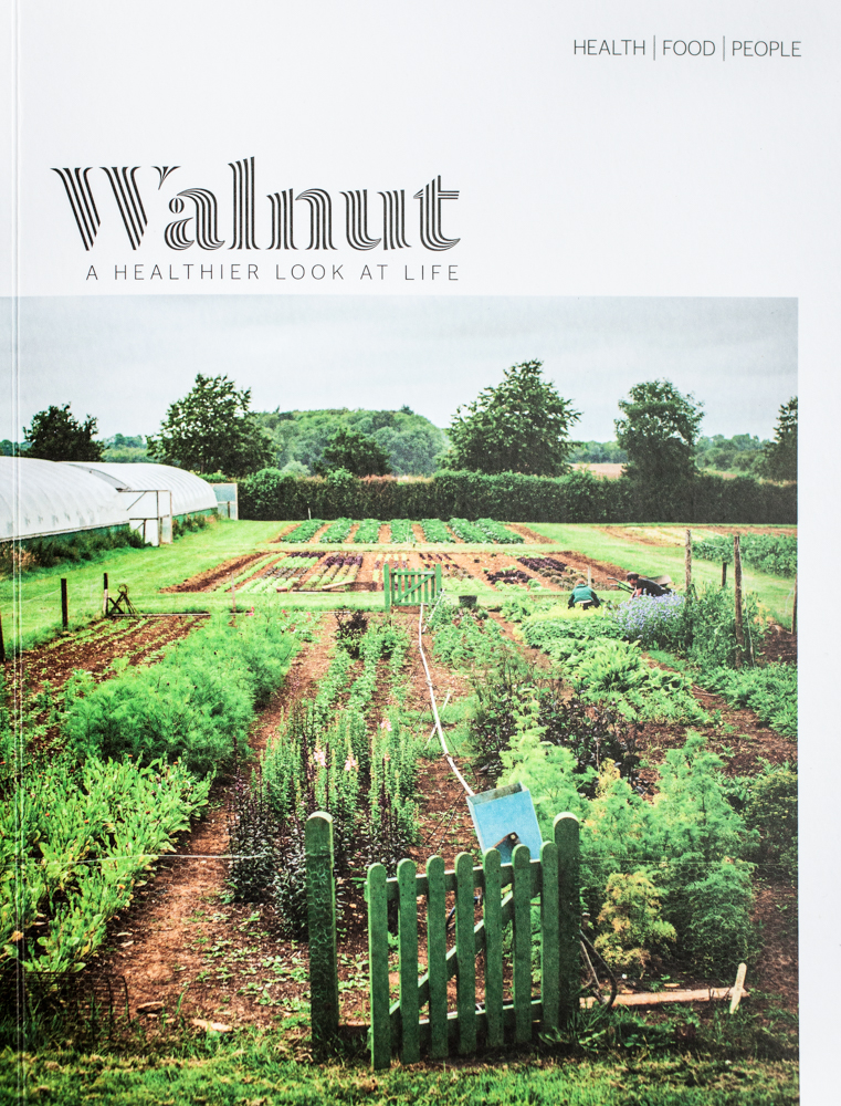 walnut front